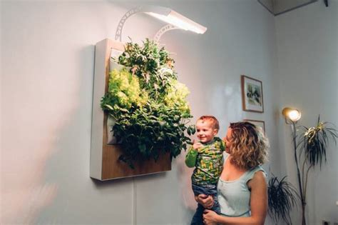 indoor hydroponic wall garden meet herbert the vertical hydroponic wall garden treehugger