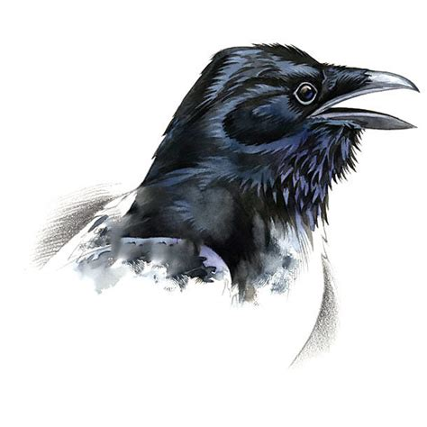 raven head tattoo design