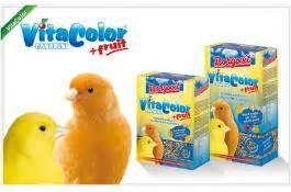 grossisti alimenti per animali gabbie modulari per animali borgovit