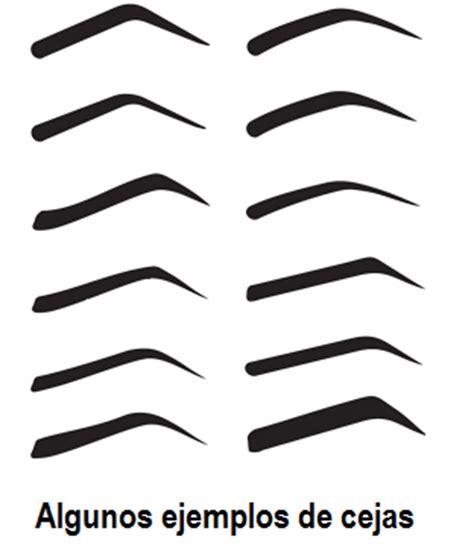 moldes para cejas plantillas para cejas 250 tiles y f 225 ciles de usar paperblog