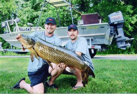 Records In Ohio Not Just Fish Stories Carp Sunfish Muskie All Set Records In Ohio The Blade