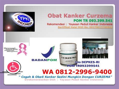 wa    tanaman obat kanker payudara penyebab