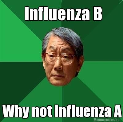 B Meme - meme creator influenza b why not influenza a meme