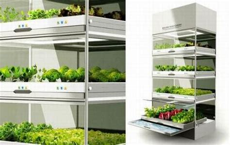 indoor hydroponic wall garden eight indoor herb gardens to enliven your kitchen hometone