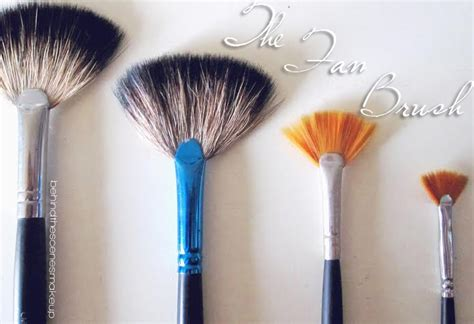 what is a fan brush used for how to use a fan brush