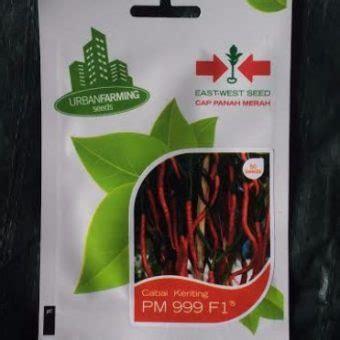 Bibit Cabai Panah Merah benih cabai pm 999 f1 50 biji panah merah bibitbunga