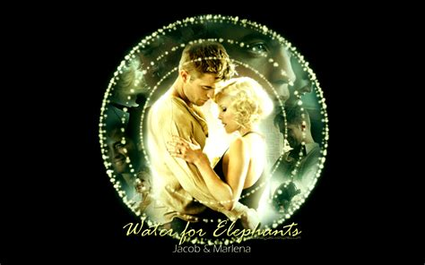 new year water happy new year water for elephants wallpapers and a