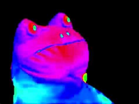 Meme Frog - mlg frog meme youtube