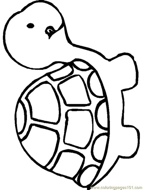 coloring page turtles printable turtle coloring pages new calendar template site