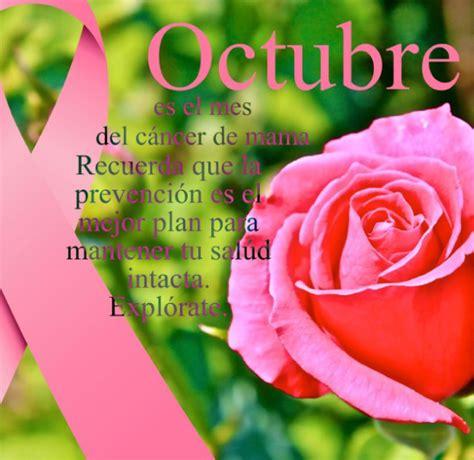 imagenes octubre mes del cancer de mama im 225 genes del mes de octubre imagui