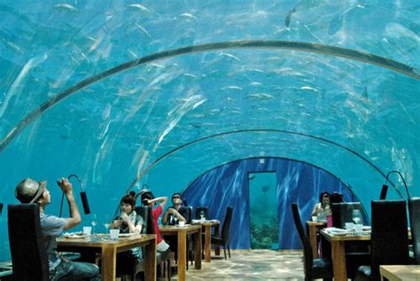 ithaa undersea restaurant amazing hotels under the sea elakiri community