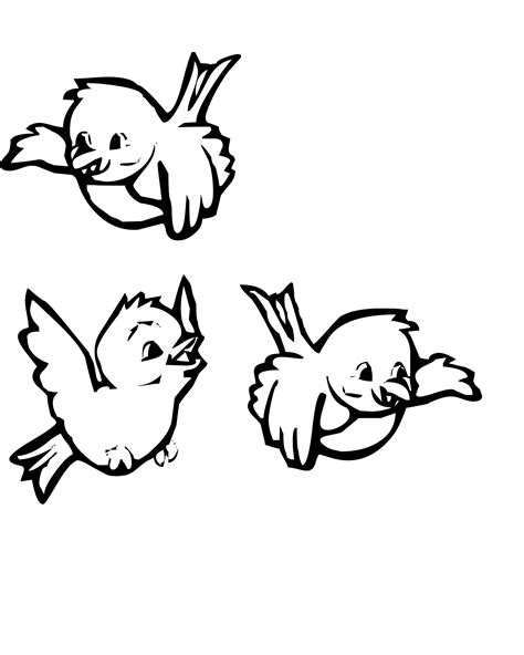bird coloring page bird coloring page with three birds coloring pages