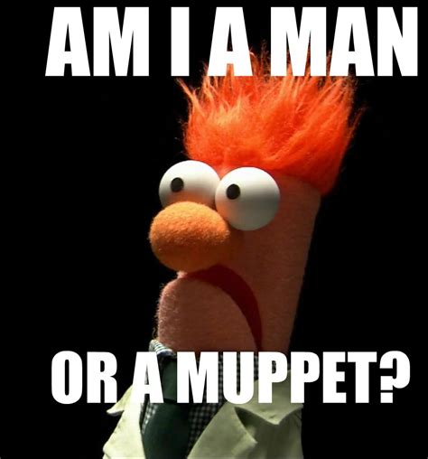 Meme Muppets - beaker meme related keywords beaker meme long tail