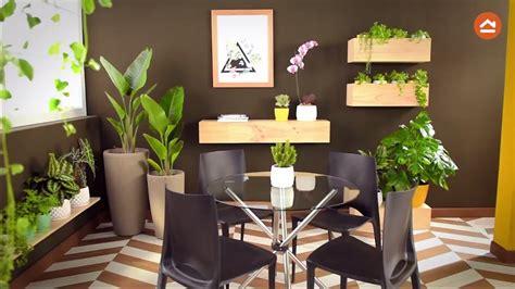 decorar los interiores con plantas decora tu casa con plantas de interior youtube