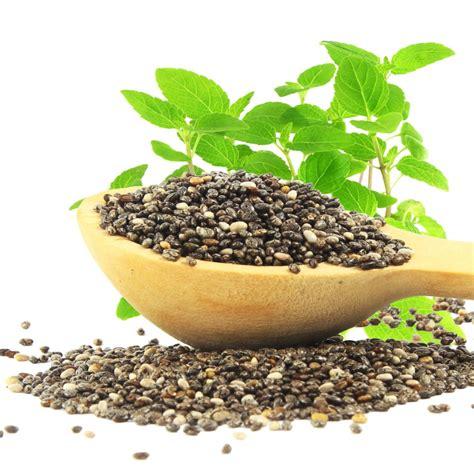 Chia Seed organic chia seeds buy organic chia seeds in bulk from