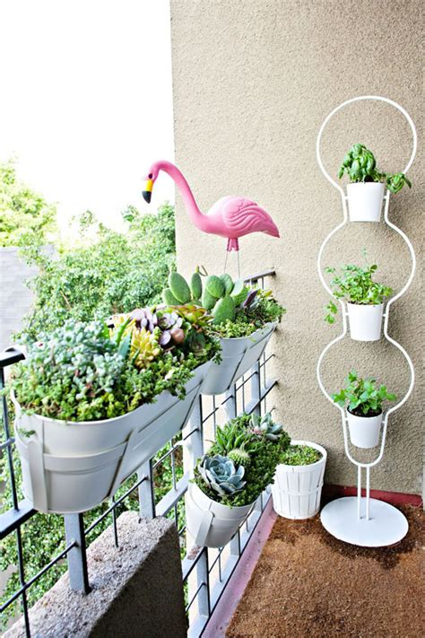 Apartment Balcony Planters by Apartment Balcony Succulent And Cacti Garden Melodrama