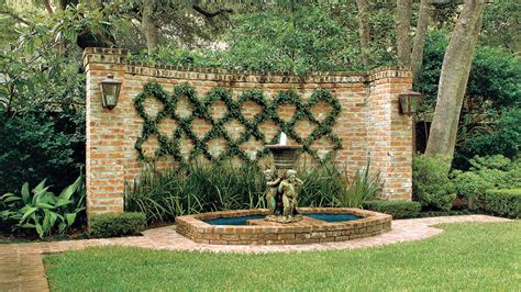 vining house plant that is trained to cover the ceiling blank wall solution easy growing vines southern living