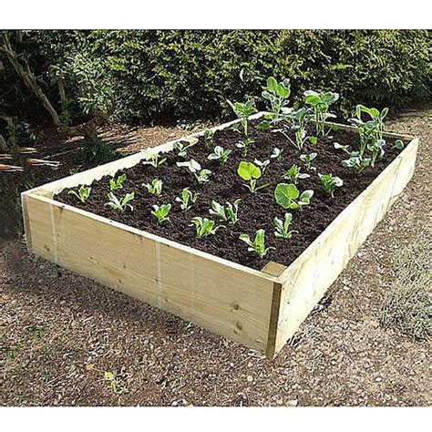 Vegetable Planters Wooden by Deluxe Raised Bed Raised Vegetable Bed Kits
