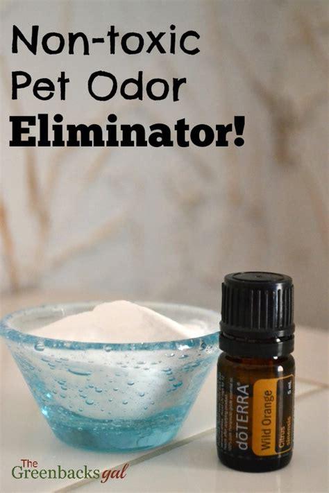 toxic pet odor eliminator natural green mom