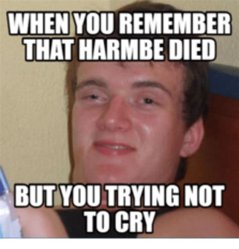 Trying Not To Laugh Meme - 25 best memes about reddits try not to laugh reddits
