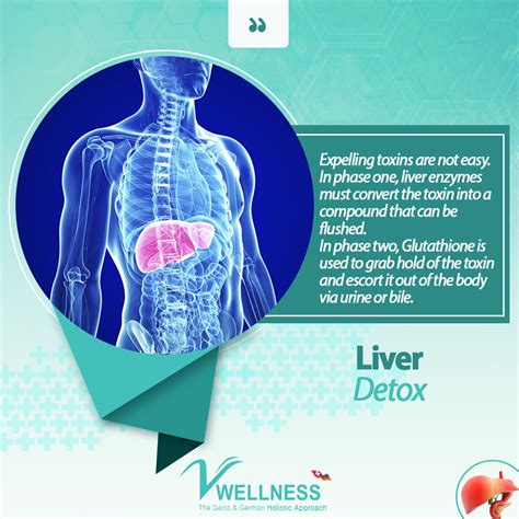 Do Liver Detoxes Cure Diabetes by Liver Detox V Wellness Clinic