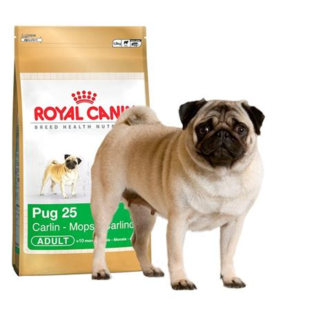 royal canine pug royal canin pug 1 5 kg 232 n11