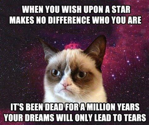 Make A Grumpy Cat Meme - make a wish grumpy cat grumpycat meme i love grumpy