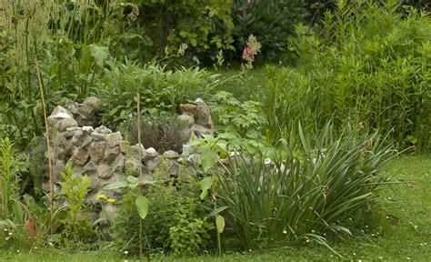 Garten Kräuterschnecke kr 228 uterschnecke gem 252 se obst kr 228 uter selbst de