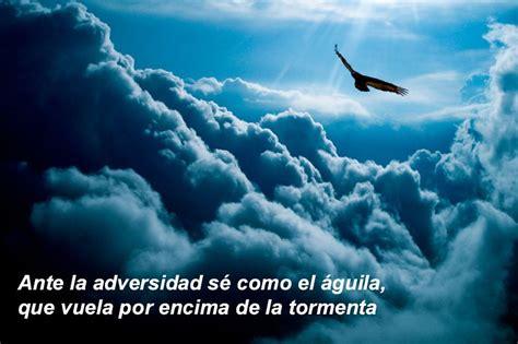 por encima de la ante la adversidad s 233 como el 225 guila que vuela por encima de la tormenta la en las