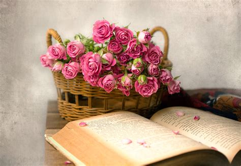 flower books flowers books baskets pink flowers