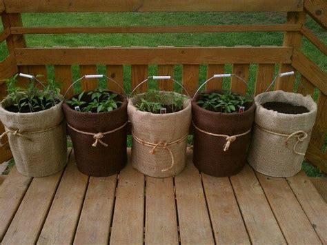 reuse buckets   garden  bucket gardening