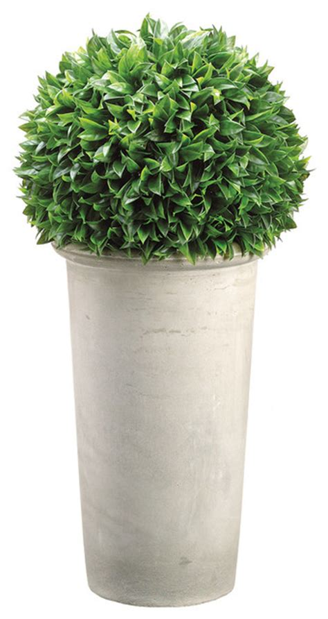 Outdoor Topiary Planters by 30 Quot Bay Leaf Topiary In Fiber Cement Planter