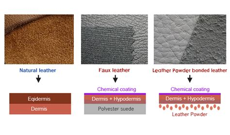 Is Real Leather by Real Leather Vs Faux Leather Useful Information