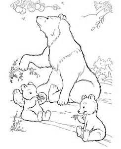 wild animal coloring pages wild bears eating berries