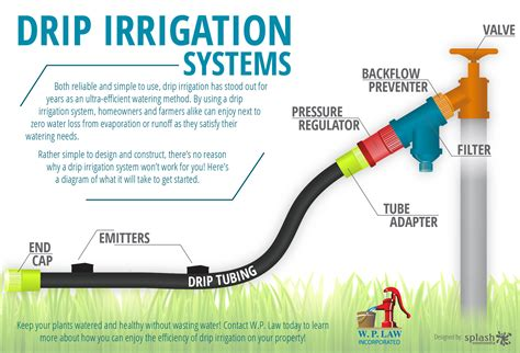 Infographic Drip Irrigation Systems How To Set Up Drip Irrigation System For Vegetable Garden