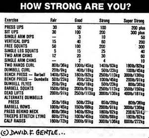 how much should i bench press chart how strong are you possible poundages