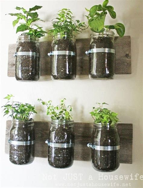Indoor Mason Jar Herb Garden Garden Fun Pinterest Jar Herb Garden Wall