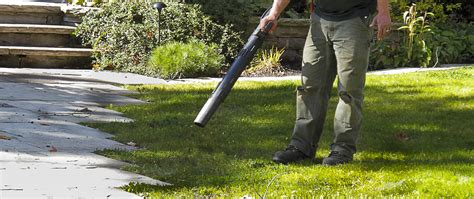 fall clean up services racine county lawn care