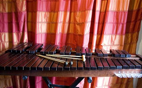 the encyclopedia of instruments of the orchestra and the great composers books xylophone