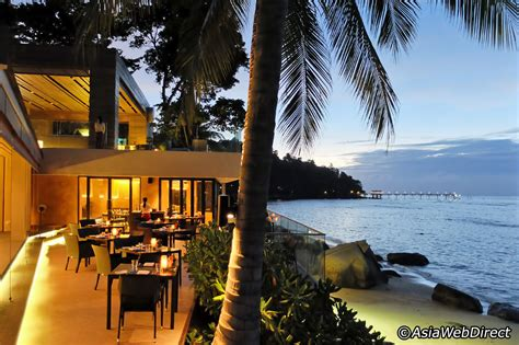 10 best restaurants in patong best places to eat