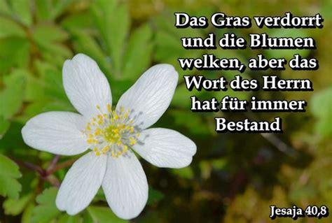 Mit Freundlichen Grã ã En Herrn Druckansicht Biblische Weisheit