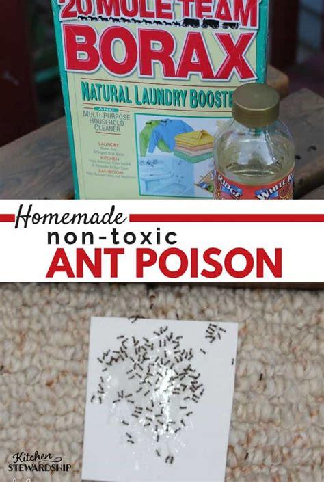 ant killer for kitchen how to make non toxic ant poison