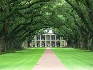 oak alley plantation updated 2017 b amp b reviews amp price