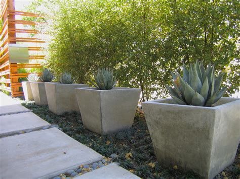 Modern Planters Los Angeles by Pots In The Landscape Modern Landscape Los Angeles