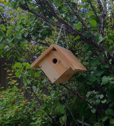 wren hanging birdhouse