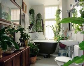 plants home decor best plants that suit your bathroom fresh decor ideas