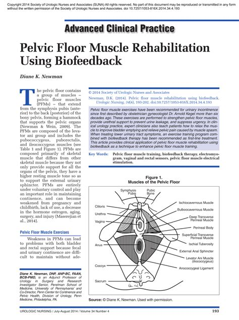 pelvic floor rehabilitation using biofeedback pdf