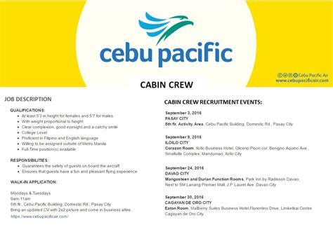 cabin crew description i cares news details