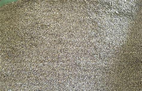Magic Doormat by Magic Door Mat Washable Doormat Carpet Home Microfibre