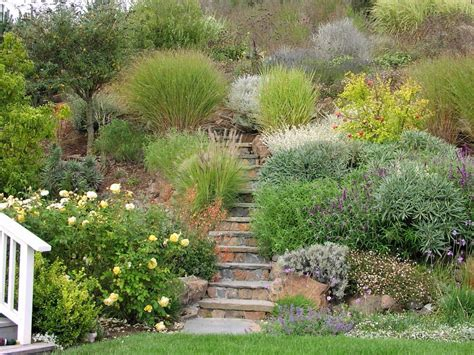 hill landscaping steep hill landscaping landscape contemporary with shingle